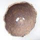 Ceramic shell 25 x 24 x 21 cm, gray color - 3/3