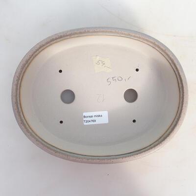 Bonsai bowl 25 x 19 x 5.5 cm, color beige-gray - 3