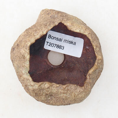 Ceramic shell 5 x 5 x 4.5 cm, color brown - 3