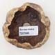 Ceramic shell 6 x 6 x 6 cm, brown color - 3/3