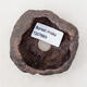 Ceramic shell 6 x 5 x 4.5 cm, brown color - 3/3