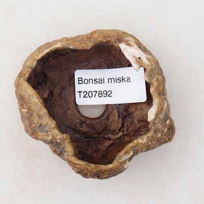 Ceramic shell 6 x 5 x 4.5 cm, brown color - 3