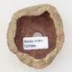 Ceramic Shell 6 x 5.5 x 5 cm, color brown-green - 3/3