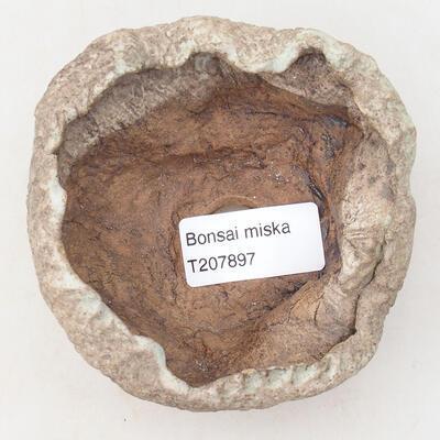 Ceramic shell 8 x 7 x 5 cm, color brown-green - 3