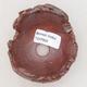 Ceramic shell 7.5 x 8 x 7 cm, gray-brown - 3/3