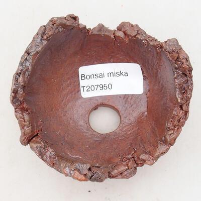 Ceramic shell 7.5 x 7.5 x 6.5 cm, gray-brown - 3
