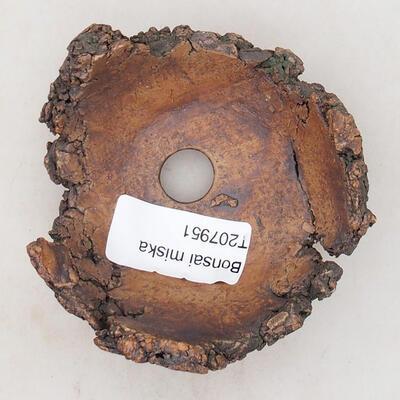 Ceramic Shell 7.5 x 6.5 x 5 cm, gray-brown - 3