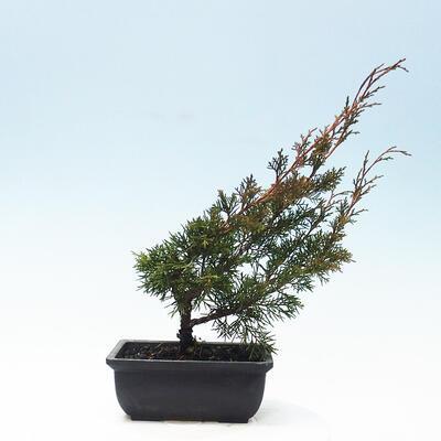 Ceramic bonsai bowl 11 x 11 x 12 cm, gray color - 3