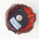 Ceramic shell 7 x 7 x 7 cm, color orange - 3/3