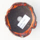 Ceramic shell 7.5 x 7 x 4 cm, color orange - 3/3