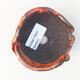 Ceramic shell 7 x 7 x 5 cm, color orange - 3/3