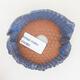 Ceramic shell 7.5 x 7 x 5 cm, color blue - 3/3