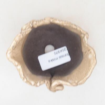 Ceramic shell 7.5 x 6.5 x 5 cm, beige color - 3