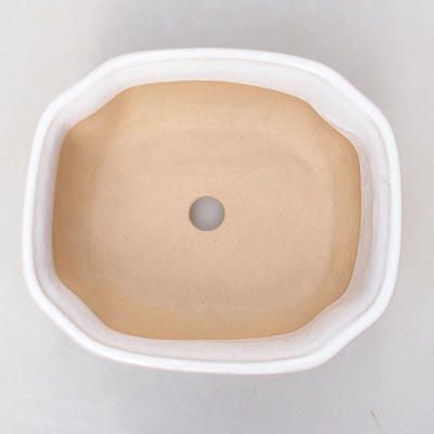 Ceramic bonsai bowl H 31 - 14,5 x 12,5 x 6 cm - 3