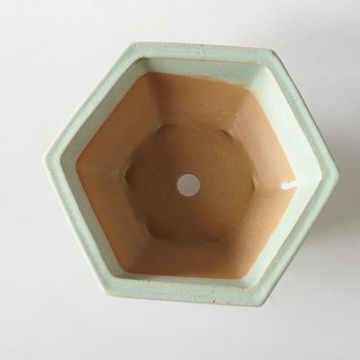 Bonsai bowl + saucer H 57 - bowl 19 x 18 x 7.5 m, saucer 19 x 18 x 1.5 cm - 3