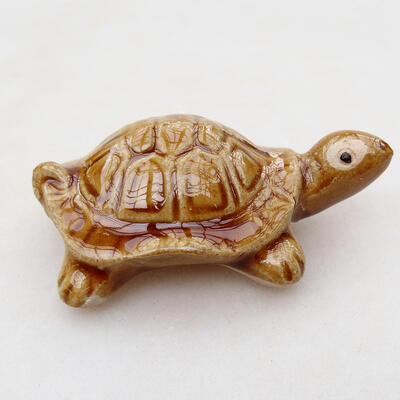 Ceramic figurine - Turtle C6 - 3