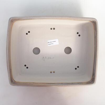 Bonsai bowl 30 x 23 x 8.5 cm, color beige-gray - 3