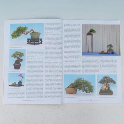 Bonsai and Japanese Garden No.53 - 3