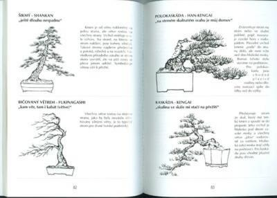 The book not only bonsai in a block of flats - 3