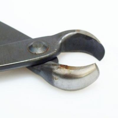 Bonsai Tools - Pliers front 175 mm - 3