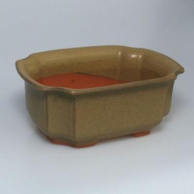 Bonsai ceramic bowl H01, beige - 3