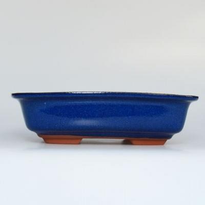 Bonsai bowl + tray H02 - tray 19 x 13,5 x 5 cm, tray 17 x 12 x 1 cm - 3
