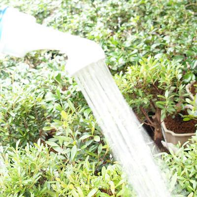 Plastic bonsai bottle sprinkler 2pcs - 3
