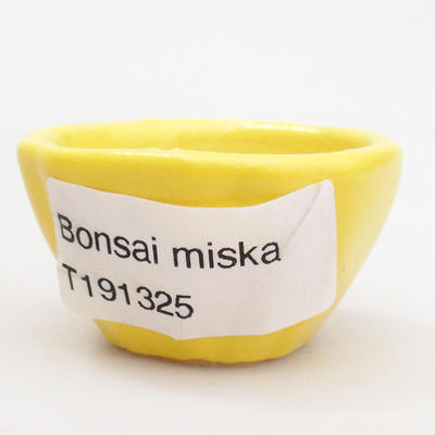 Mini bonsai pots - 4