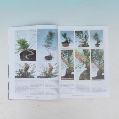 Bonsai and Japanese Garden No.54 - 4