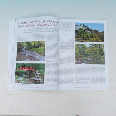 Bonsai and Japanese Garden No.53 - 4