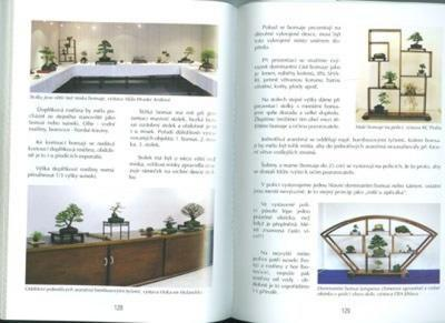 The book not only bonsai in a block of flats - 4
