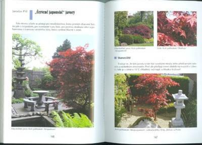The book not only bonsai in a block of flats - 5