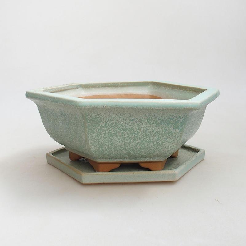 E Bonsai Bonsai Bowl Saucer H 57 Bowl 19 X 18 X 7 5 M Saucer 19 X 18 X 1 5 Cm