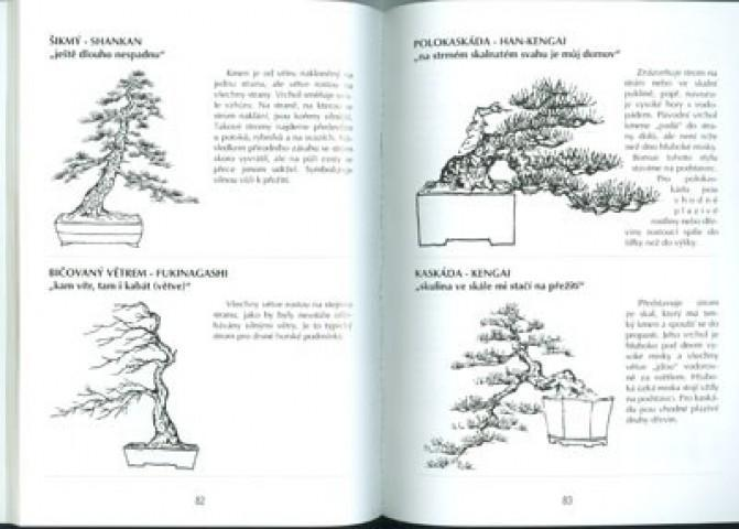 E Bonsai The Book Not Only Bonsai In A Block Of Flats